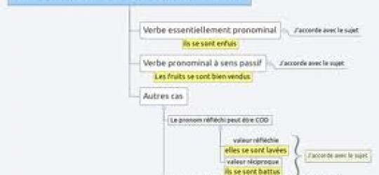 L'accord du participe passé employé avec AVOIR