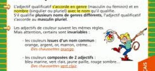 L'accord en genre et en nombre de l'adjectif qualificatif  attribut