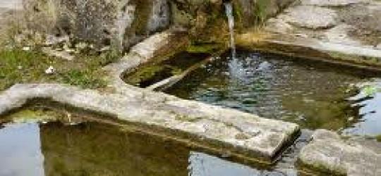 La Fontaine des fables.  La fourmi et la cigale