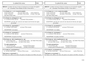 Pluriel des noms - cours dans Orthographe pluriel-des-noms-300x212