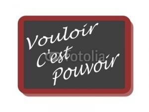 Les verbes vouloir et pouvoir au présent de l'indicatif  dans 13.Tlemcen vouloir-pouvoir-300x225